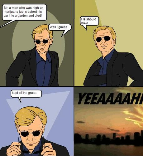 CSI Miami Joke